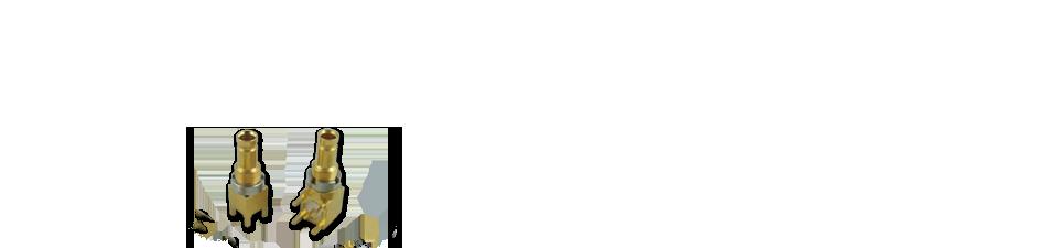 ri seo