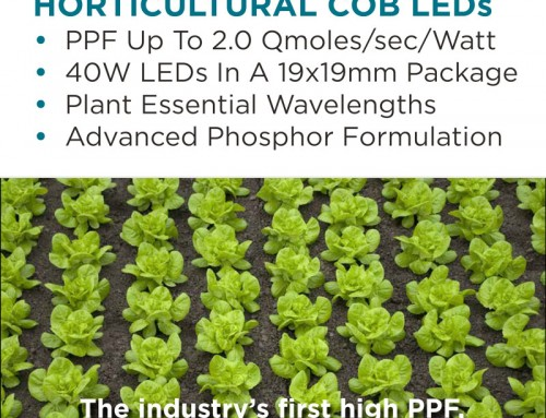 Hailux Lighting Horticultural COB Brochure
